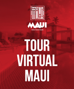 Tour Virtual no Maui
