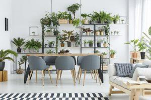 Conheça as principais plantas exóticas para sua decoração!