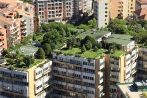 Paisagismo e arquitetura: por que esses conceitos devem andar juntos?